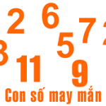 Quan niệm con số may mắn – Con số của thịnh vượng phát tài