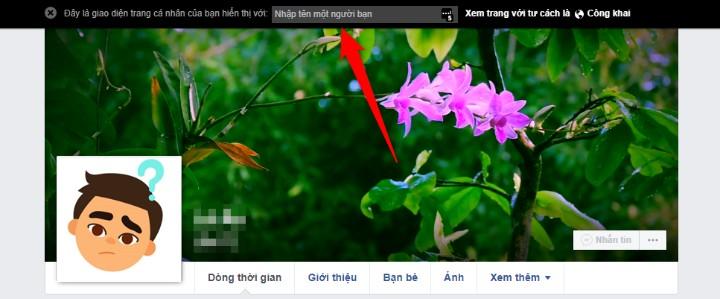 Kiểm tra Trang Facebook cá nhân